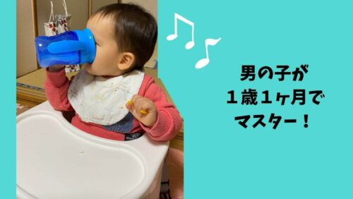 男の子が1歳1ヶ月でマスター!